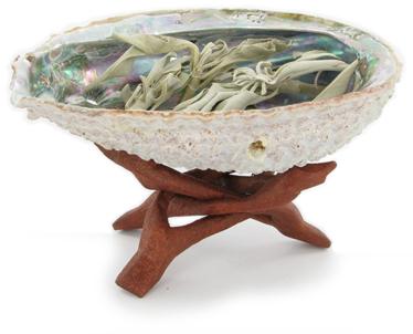 Afbeeldingsresultaat voor salie abalone